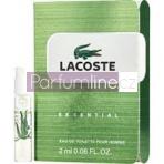 Lacoste Essential (M)