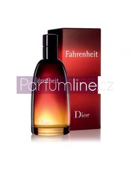 Christian Dior Fahrenheit, Toaletní voda 100ml