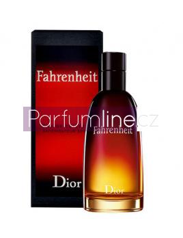 Christian Dior Fahrenheit, Toaletní voda 100ml - Tester