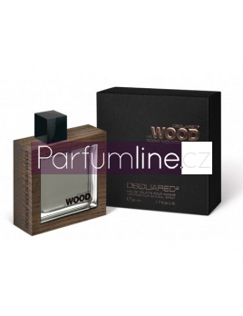 Dsquared2 He Wood Rocky Mountain Wood, Toaletní voda 100ml - tester