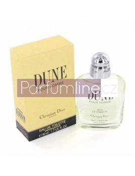 Christian Dior Dune pour Homme, Toaletní voda 100ml